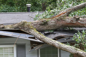 Monroe Restoration provides emergency service 24-hours a day, 365 days a year